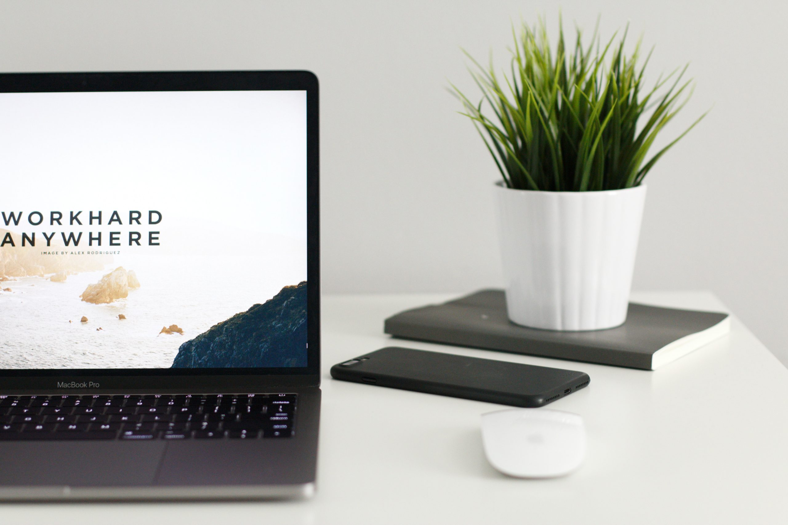 site web lequel choisir